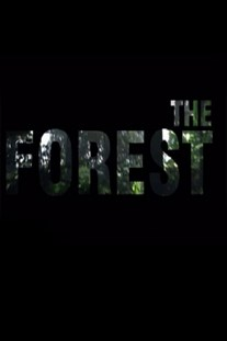The Forest [v 1.11b] (2018)