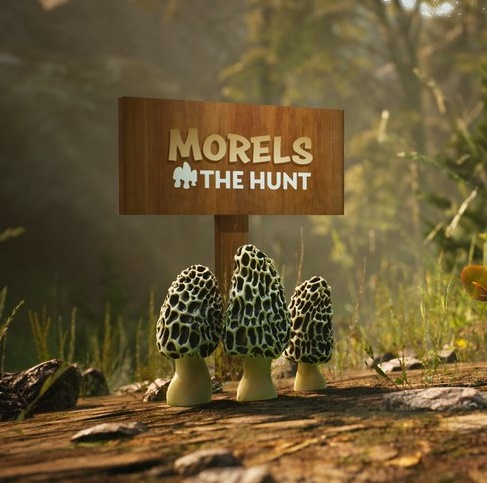 Morels: The Hunt (2019)